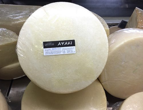 Apsaki cheese