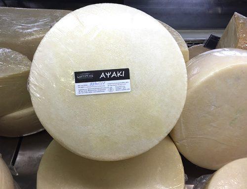 Apsaki cheese